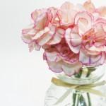 カーネーション花瓶