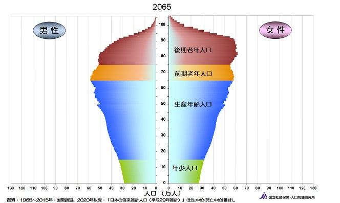 2065年の人口ピラミッド画像